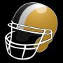 icon Pittsburgh Football News